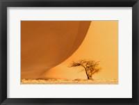 Framed Namib-Naukluft National Park, Namibia