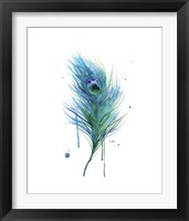 Framed Peacock Feather Teal