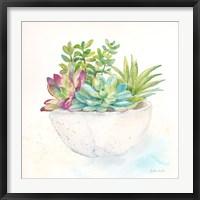 Framed Sweet Succulent Pots II