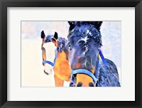 Framed Snow Horses