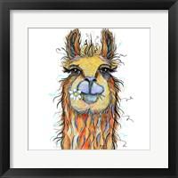 Framed Llama with Daisy