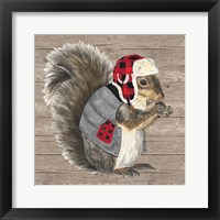 Warm in the Wilderness Squirrel Framed Print