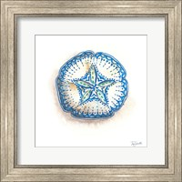 Framed Bohemian Shells VI