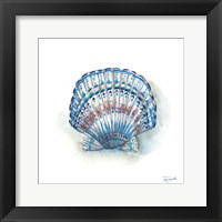 Bohemian Shells VII Framed Print