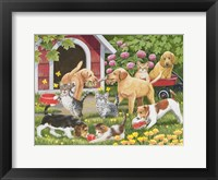 Framed Puppies and Kittens - Spring and Summer