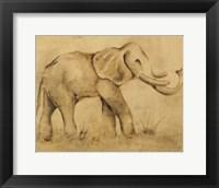 Framed Global Elephant Light Crop