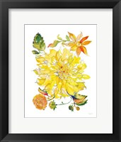 Framed Dahlia Delight of the Day III