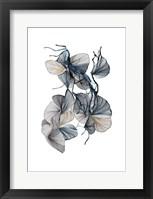 Framed Amal