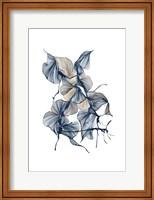 Framed Lissome