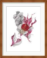 Framed Amour
