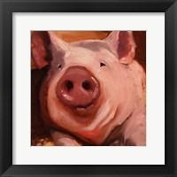 Framed Some Pig