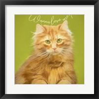 Framed Wanna Love Me Cat