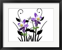 Framed Purple Delight