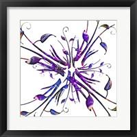 Framed Purple Explosion