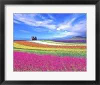 Framed Colorful Landscape