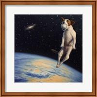 Framed Earthbound Dream