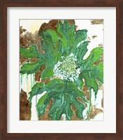Framed Oak Hydrangea