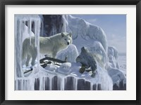 Framed Ice Cascade