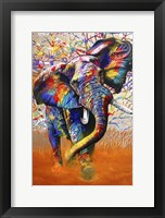 Framed African Colours