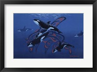 Framed Blue Orcas