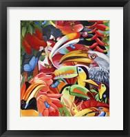 Framed Jungle Colours
