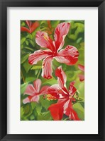 Framed Red Hibiscus 3