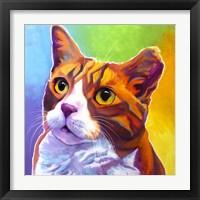 Framed Cat - Ernie