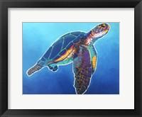 Framed Sea Turtle - Rainbow