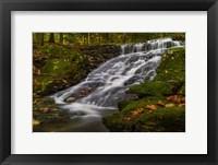 Framed Abbey Pond Cascades