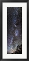 Framed Backyard Milky Way