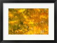 Framed Glowing Waters