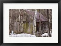 Framed Sharon Barn