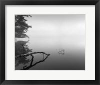 Framed Silent Morning