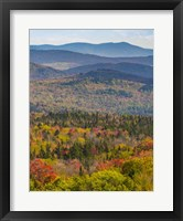 Framed Vermont's Colors