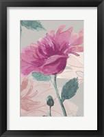 Framed Flower Sketch 1