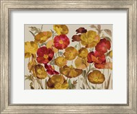 Framed Yellow And Red Poppies