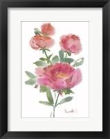 Framed Flower Series 1