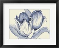 Framed Indigo Tulip