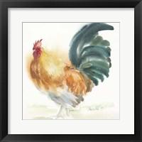 Framed Orange Rooster