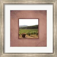 Framed Tuscan Vineyard II