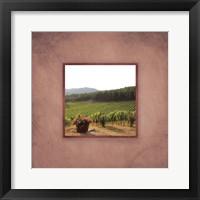 Tuscan Vineyard II Framed Print