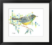 Framed Yellow Kentucky Warbler