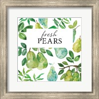 Framed Fresh Pears