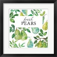 Framed Fresh Pears