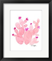 Framed Pink Prickly Pear Cactus