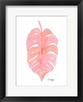Framed Pink Palm Frond I