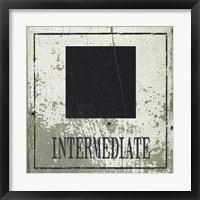 Framed Intermediate Square