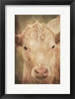 Framed Henrietta