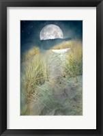Framed Moonlight Path
