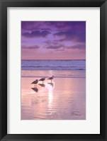 Framed Seagull Beach II
